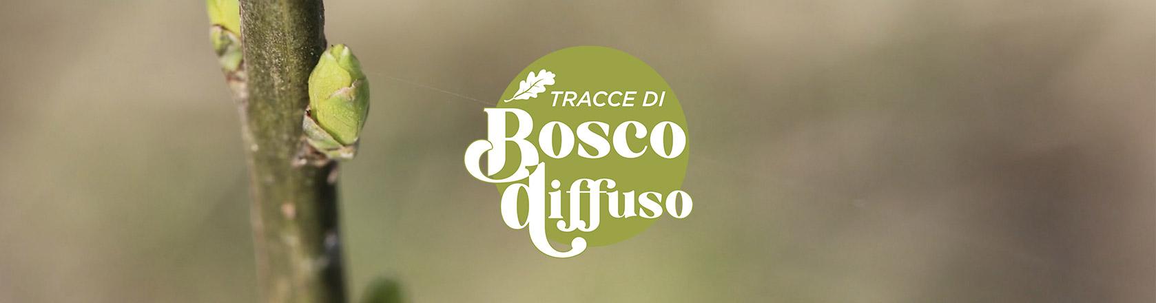Bosco Diffuso
